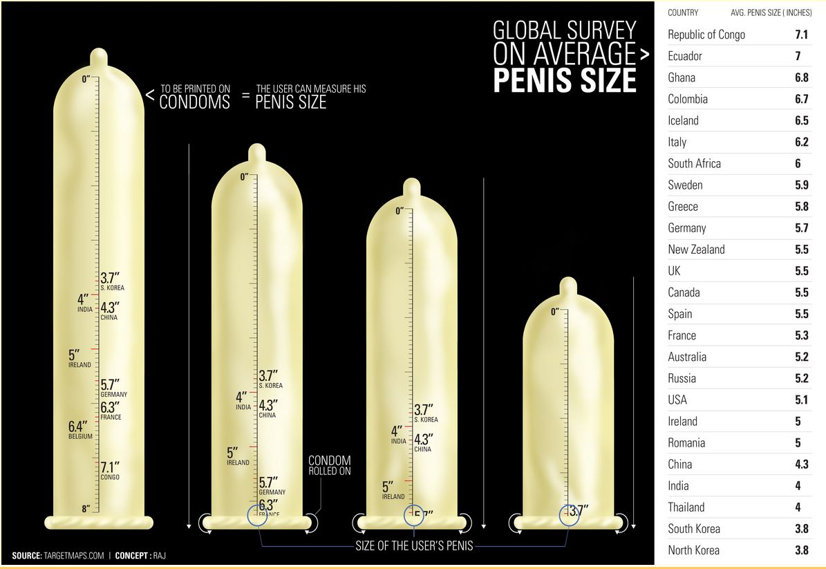 Average human male penis size