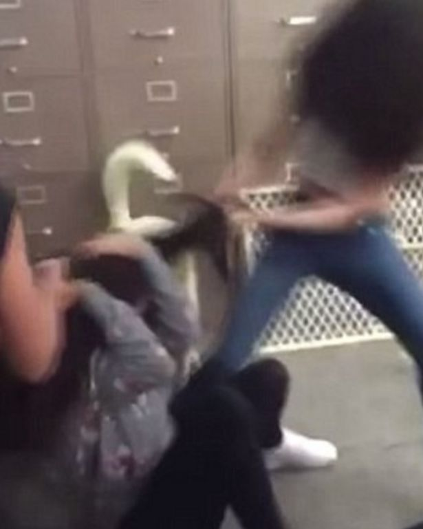 Asian girl gets beat up