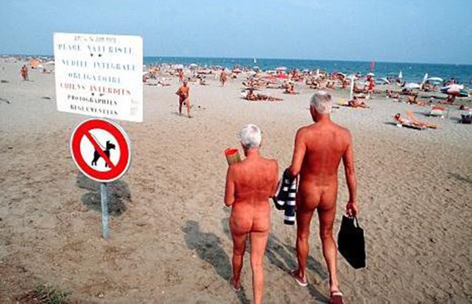 Confirm. Nudist families excited