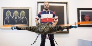 cat-feat