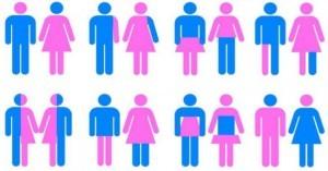 nyc gender
