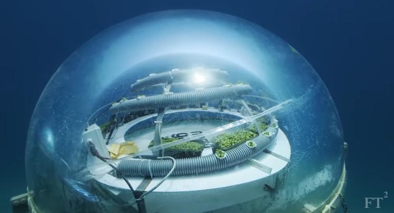 Nemo's Garden (VIDEO)   protothemanews.com
