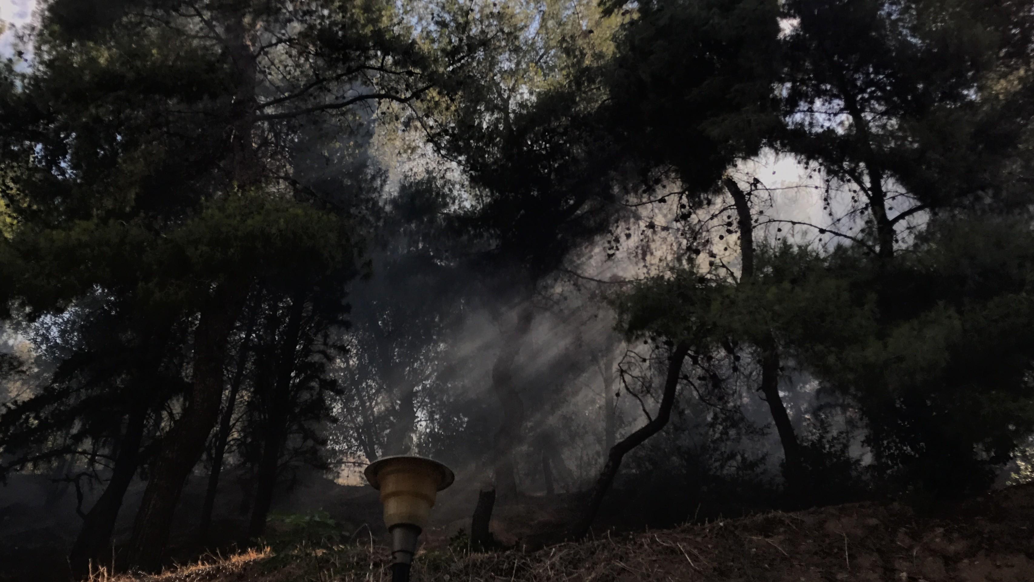 breaking bush fire breaks out in dafni area in athens