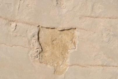 fossil-footprints-stolen-660x330