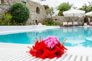 Flowers-in-pool-1-1024x678