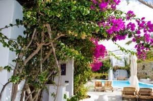 Villa-Hurmuses-garden-1024x678