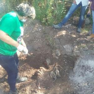 fouilles_mirna