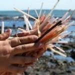 straws-on-beach-by-EcoStraws-310x158