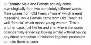 create-patriarchal-language-linguistic-6