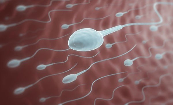 Reasons Why Semen Is The Healthiest Substance Ever Warning  Only